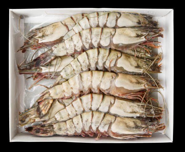Whole Prawns 8-12 1kg